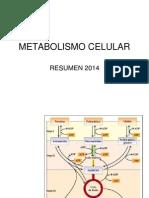 Metabolismo Celular 2014