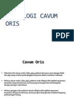 Histo Cavum Oris