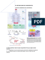 Roteiro - Metabolismo de Carboidratos