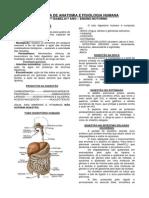 Anatomia e Fisiologia Humana-libre