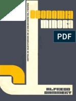 Economia Minera