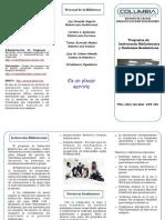 Brochure Instruccion Bibliotecaria[1]