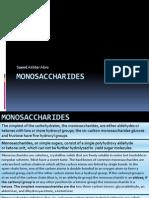 Mono Sacha Rides