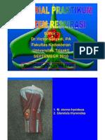 PDF Tutorial_praktikum_model Sistem Respirasi 2010
