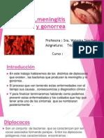 Diplococos, Meningitis o Gonorrea Trabajo.