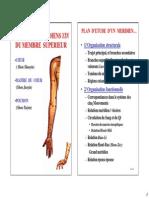 Acupuncture 1A Meridiens de Poumon de Coeur Et de Maitre Du Coeur