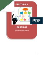 Manual de Rubricas Resumidas PDF