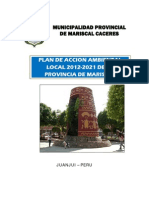 Plan de Accion Ambiental Local - MPMCJ