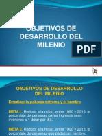 5. Objetivos de Desarrollo Del Milenio