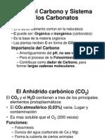 CLASE 10 Gases Disueltos CO2