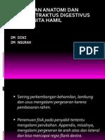 Perubahan-Anfis Traktus Digestivus Ibuhamil