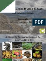 Anfíbios Da Região Subtropical Da América Do Sul