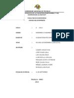 Proceso de Enfermeria Ejecucion_1