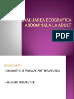 Evaluarea Ecografica Abdominala La Adult (Anatomie, Indicatii, Limite) - O Marica