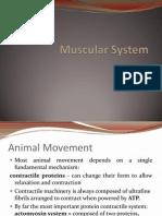 Muscular System ni maam karra baro