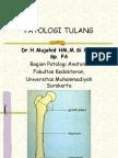 Patologi tulang 2