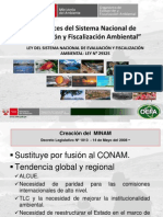 Alcances Del Sistema Nacional de Evaluacion y Fiscalizacion Ambiental