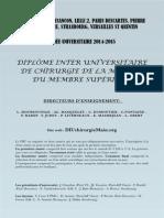 Affiche DIU 2014-2015