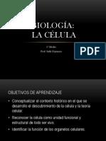 Teoria Celular Biologia 1_ MEDIO