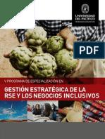 V Programa RSE y Negocios Inclusivos 2014