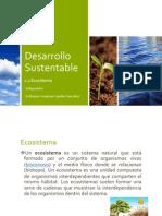 Desarrollo Sustentable Ecosistema