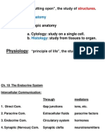Ch. 18 Endocrine