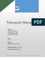 Informe_N°_2_de_laboratorio_de_procesamiento_de_minerales_I[1]