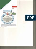 Algoritmo PCR