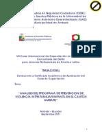 Analisis Programa Prevencion Violencia Intrafamiliar