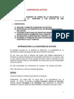 Programas Auditoria de Activos (1)