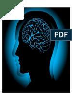 gambar 3 (otak)