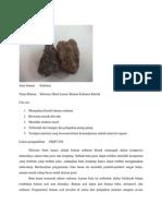 Buletin Batu Lanau (Siltstone)