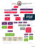 Diagnostic TREE - Petechiation-Ecchymoses