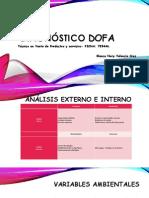 Presentación1 DOFA IMAG