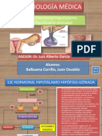 Ejehormonalhipotalamo Hipofisiario Gonadaltesticulosovariocelulasyhormonas 130217055229 Phpapp01