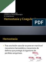20110304 Hemostasia y Coagulacion Fatima