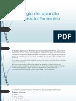 Fisiología Del Aparato Reproductor Femenino