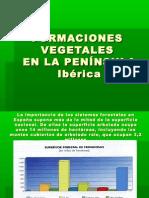Formaciones vegetales