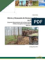 2013-03-10 Informe Biomasa sólida (1).pdf
