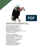 O Urubu - Versão suburubana de O Corvo, de Edgar Allan Poe