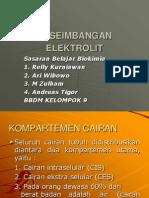 Sasbel Biokimia - Keseimbangan Elektrolit