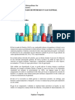 GAS LICUADO DE PETROLEO Y GAS NATURAL.doc