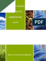Contabilização Dos Eventos Ambientais-PARTE1