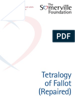 TSF Tetralogy of Fallot Web