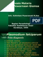 20. Praktikum Plasmodium
