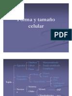 ppt lab 2