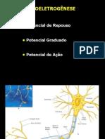 Bioeletrogênse 2010