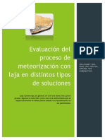 Informe Final Meteorizacion