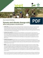 Bosques y biocombustibles