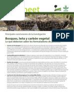 Bosques, leña y carbón vegetal